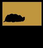 Logo_Sous_Texte.png